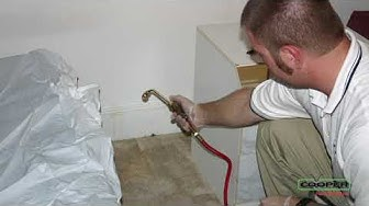 Bed Bug Pest Control Spring House PA | Eliminate Bed Bugs Spring House PA