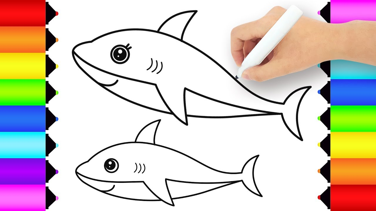 how to draw shark  cute shark drawing and coloring pages