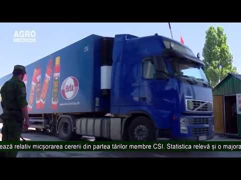 A crescut volumul exporturilor din Moldova