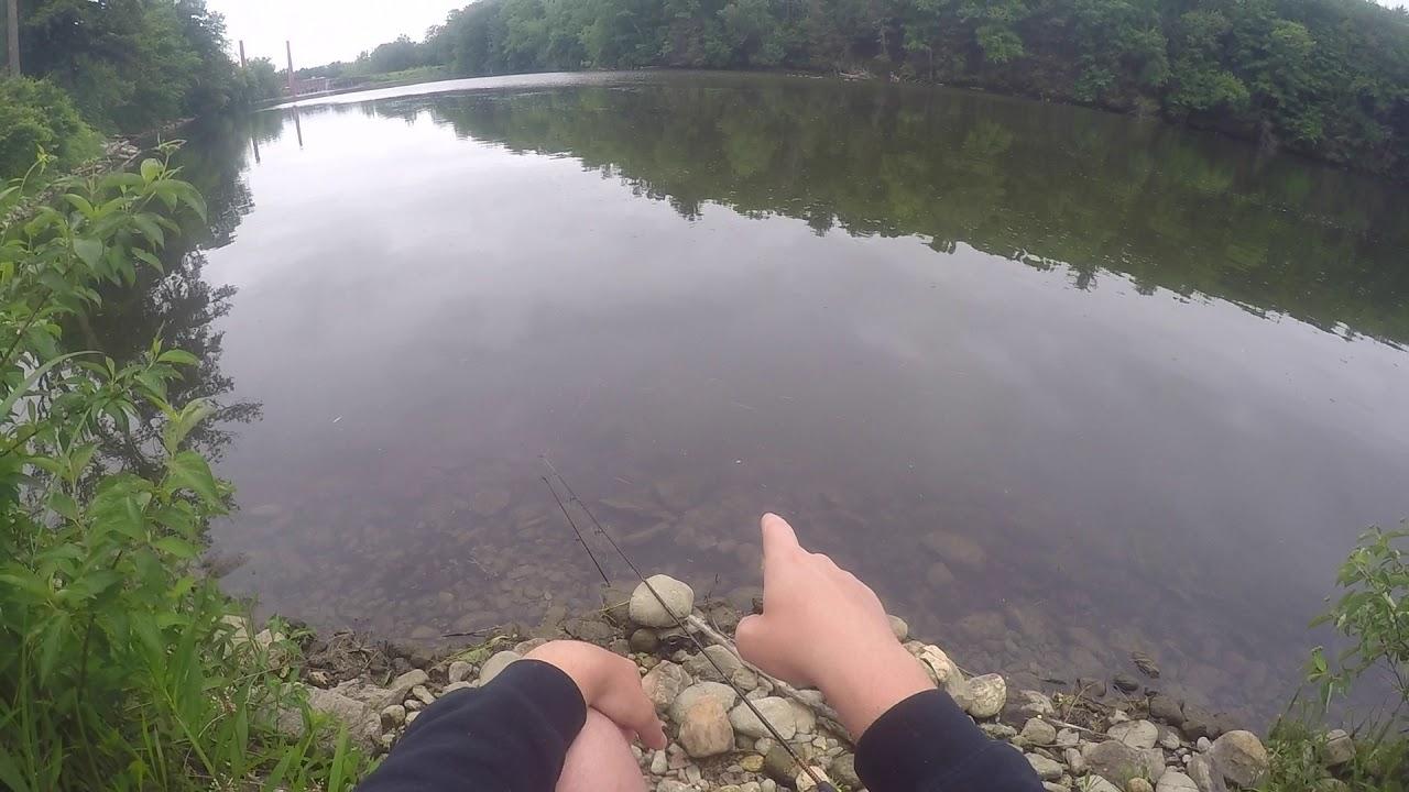 CARP FISHING THE HOUSATONIC RIVER, 06:13:2019 - YouTube