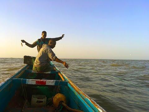 Fishing by Pirogue, Gambia SHORT (3mins)