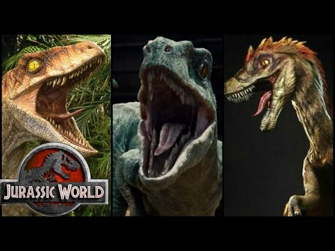 Download Youtube: Different Types of Jurassic Park/World Velociraptors