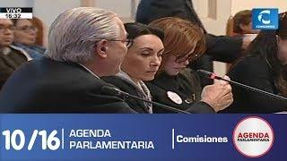 Sesión Comisión de Constitución 10 (19/07/19)