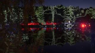 волшебный лес в парке Останкино