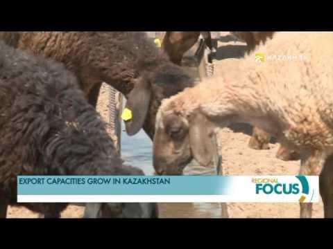 Export capacities grow in Kazakhstan