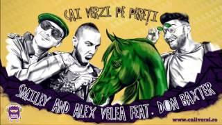 Smiley & Alex Velea feat. Don Baxter - Cai verzi pe pereti (Matrix Remix)