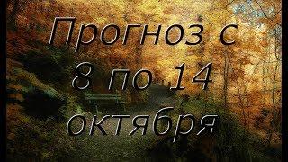 Расклад Таро. Прогноз с 8 по 14 октября.