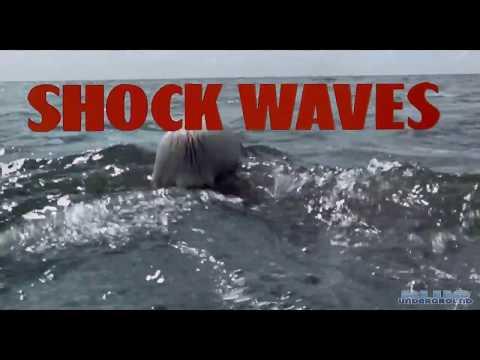 Shock Waves 1977 NAZI WATER ZOMBIES WW2 Peter Cushing John Carradine