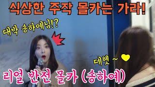 노래방에서 니소식 부르는데 원곡 가수 송하예가 나타난다면? 미녀손님 반응은?ㅣfeat.무선마이크하비