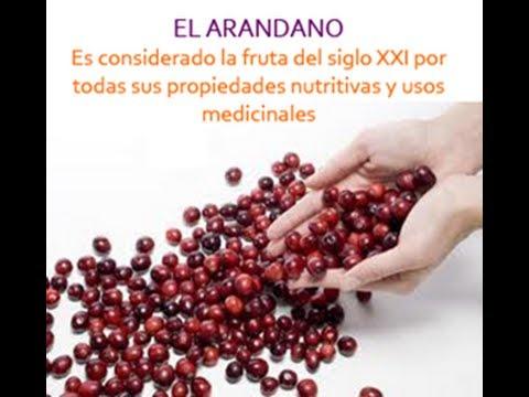 propiedades y beneficios de los arándanos rojos