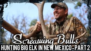 Screaming Bulls 2 – Hunting Big Elk In New Mexico – Part 2