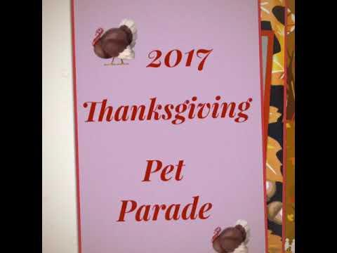 Lakeland Pet Salon's 2nd Annual 2017 Thanksgiving Parade Of Pets