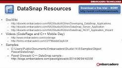 Simple Rest Client Delphi RAD Studio XE6