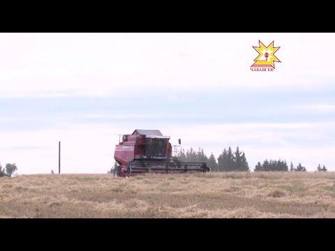Кадастровая оценка земель сельхозназначения