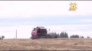 видео Кадастровая оценка земель сельскохозяйственного назначения