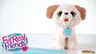 FurReal Friends Deutschland - 'Pax, mein ich muss mal Hündchen' Produktdemo-Video