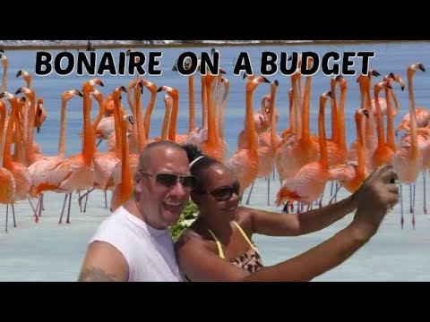 Bonaire On A BUDGET!