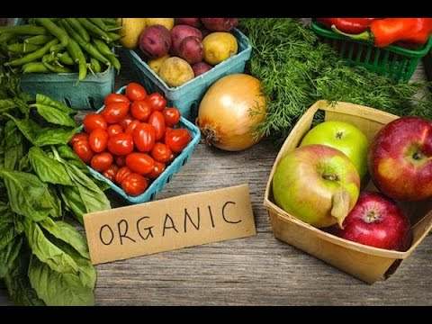 Organic food in Florida