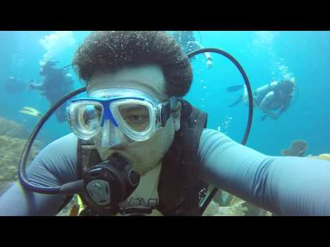 Flashes de um Mergulho em Anguilla