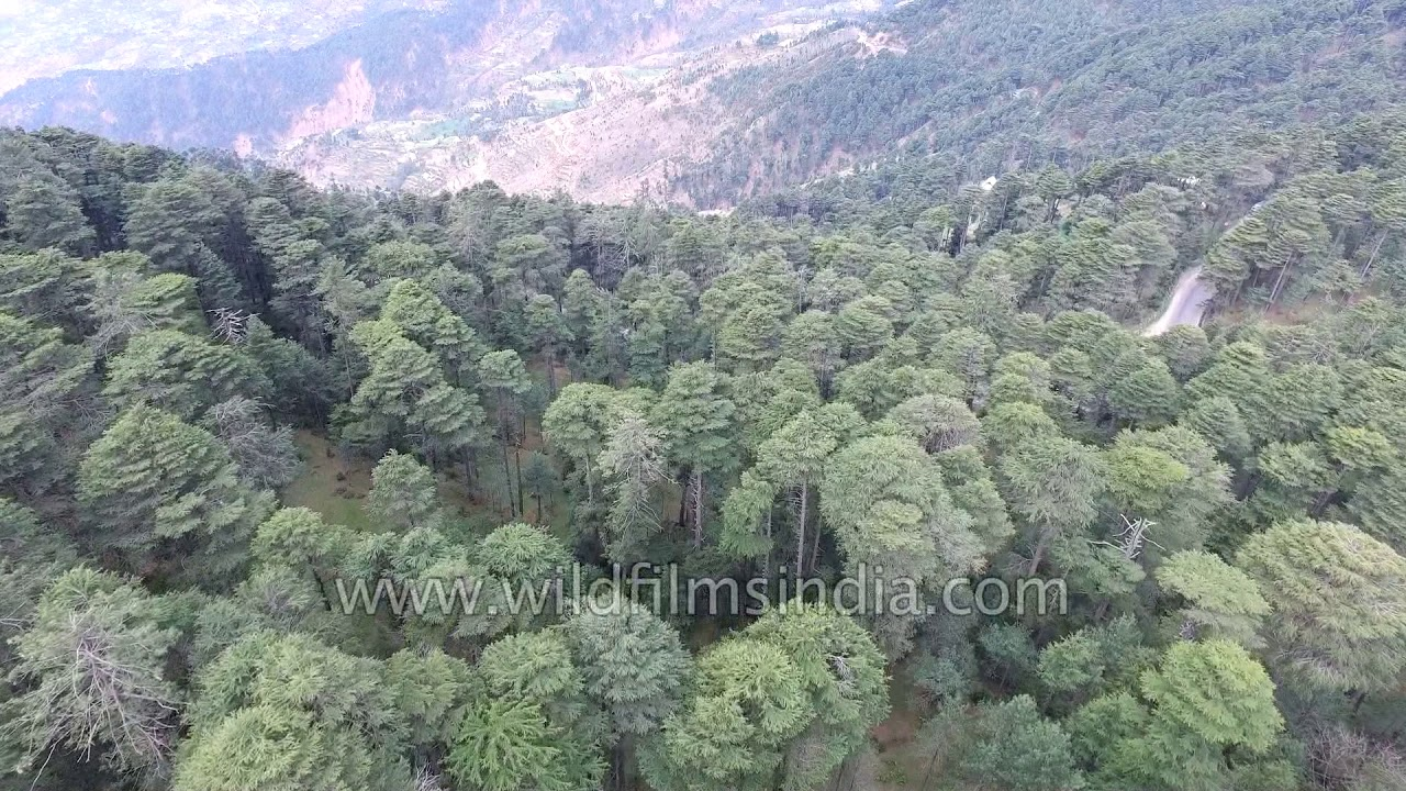 mountain cabin in himalayan mountains of india aerial. Black Bedroom Furniture Sets. Home Design Ideas