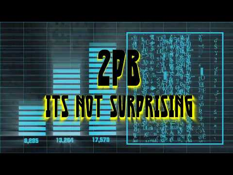 2PB - Its Not Surprising (Official Audio)