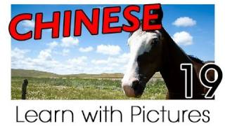 Learn Chinese With Pictures - Farm Animals