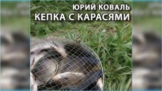 Кепка с карасями, Юрий Коваль радиоспектакль слушать онлайн