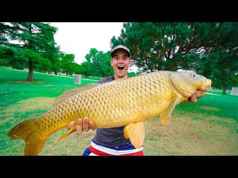 BEST FISHING MOMENTS OF 2017!!!!