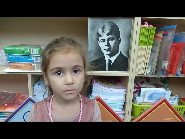 Изображение предпросмотра прочтения – АминаАлахвердиева читает произведение «О поэте» С.А.Есенина