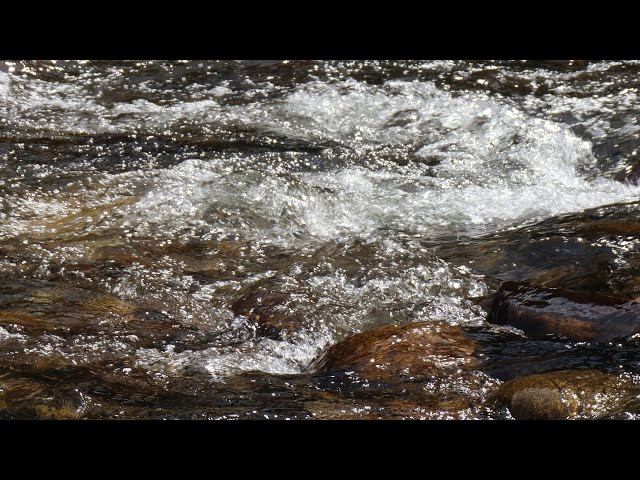 4k Clear Creek Closeup - Doghead Rail Bridge Trailhead