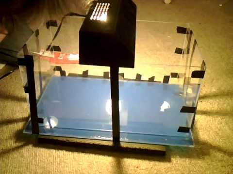 Gluing acrylic how to make a fish tank diy acrylic for Acrylic vs glass fish tank