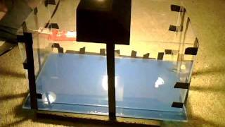 Gluing Acrylic How To Make A Fish Tank Diy Acrylic Aquarium Part 3