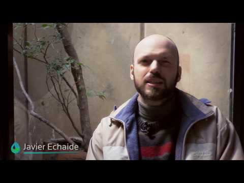 Interview/Entrevista - Dr. Javier Echaide, University of Buenos Aires, Argentina