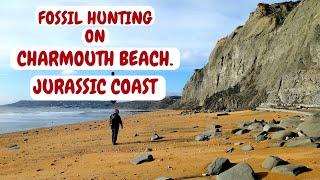 FOSSIL HUNTING ON CHARMOUTH BEACH. JURRASIC COAST. DORSET. NOV.2017.