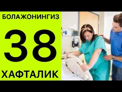 Download ТУГРИК АЛОМАТЛАРИНИ БИЛАСИЗМИ