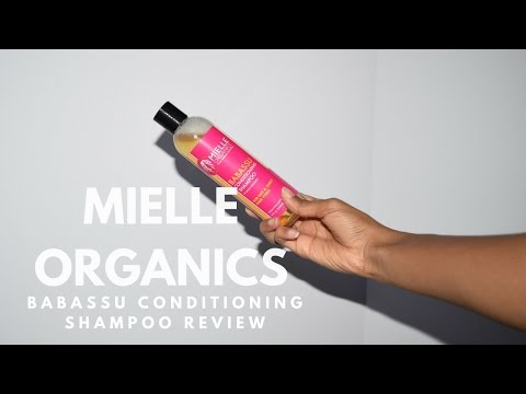 Mielle Organics Babassu Oil Conditioning Shampoo Review