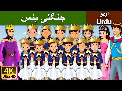 The Wild Swan in Urdu - Urdu Story - Stories in Urdu - 4K UHD - Urdu Fairy Tales