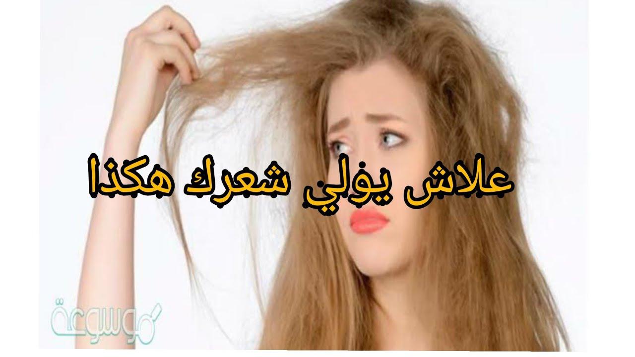 علاش شعرك وشعرك بنتك يتنفخ نهار العيد؟ راح نقوللكم علاش