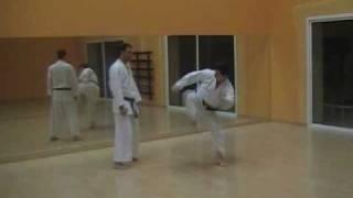 Geri waza.Técnicas de pierna Shotokai.Mae geri,Yoko y mawashi geri.José Cáceres