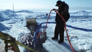 Золотая лихорадка: Берингово море - Каждый Келли сам за себя
