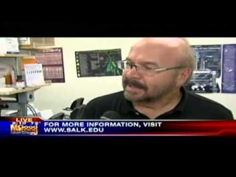 KUSI-TV - New Plant Technology - Salk News Clip - Part3