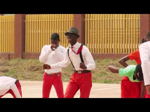 Togo Righteous Stars : Happy