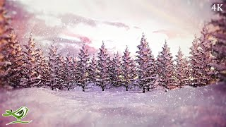 Silent Night • Instrumental Christmas Song | Soothing Relaxation