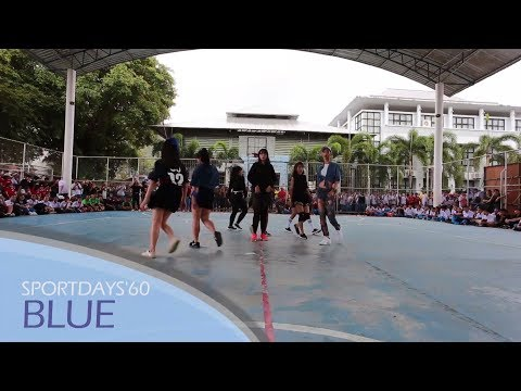 SPORT DAYS PKW #COVER BLUE '60