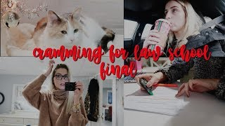 STUDYING FOR CRIM PRO | LAW SCHOOL VLOGMAS