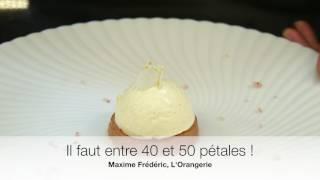 La sublime Fleur de vacherin de Maxime Frédéric, L'Orangerie