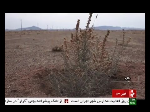 Iran Planting trees, Akhtar-Abad rural district, Malard county كاشت درخت دهستان اخترآباد ملارد ايران