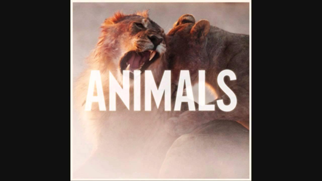 maroon animals instrumental