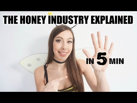 THE HONEY INDUSTRY EXPLAINED IN 5 MINUTES