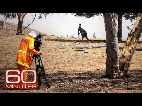 Australia's Bushfires Impact A 60 Minutes Team